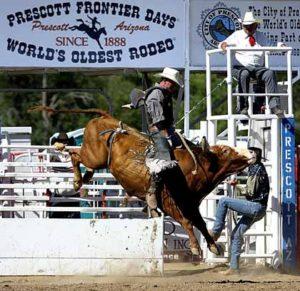 prescott-rodeo-horse